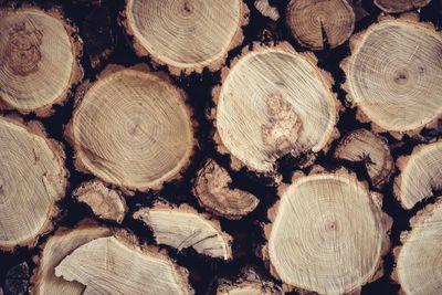 registro nazionale legno